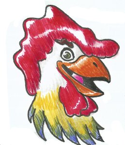 Chicken head drawing